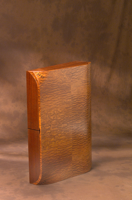 Turtle Shell Wall Cabinet 2